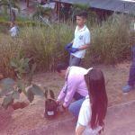 ITD sembrando árboles 7