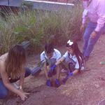 ITD sembrando árboles 8